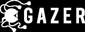 GAZER | セミコンサル型のサイトアクセス解析・データ分析サービス<